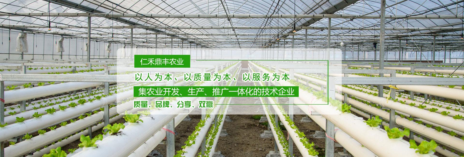 花生增产叶面肥